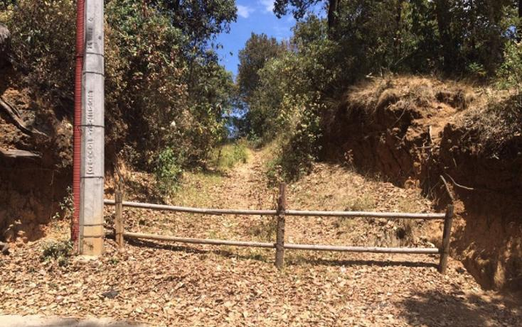 Foto de terreno habitacional en venta en paraiso (9 de septiembre) , santa ana jilotzingo, jilotzingo, méxico, 1769370 No. 03