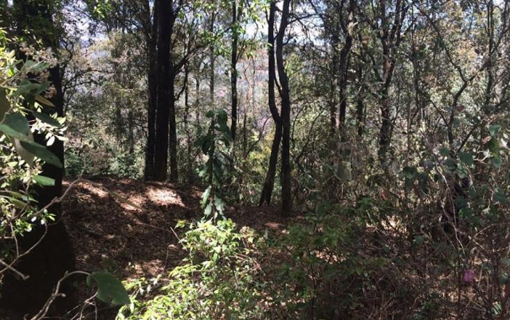 Foto de terreno habitacional en venta en paraiso (9 de septiembre) , santa ana jilotzingo, jilotzingo, méxico, 1769370 No. 10