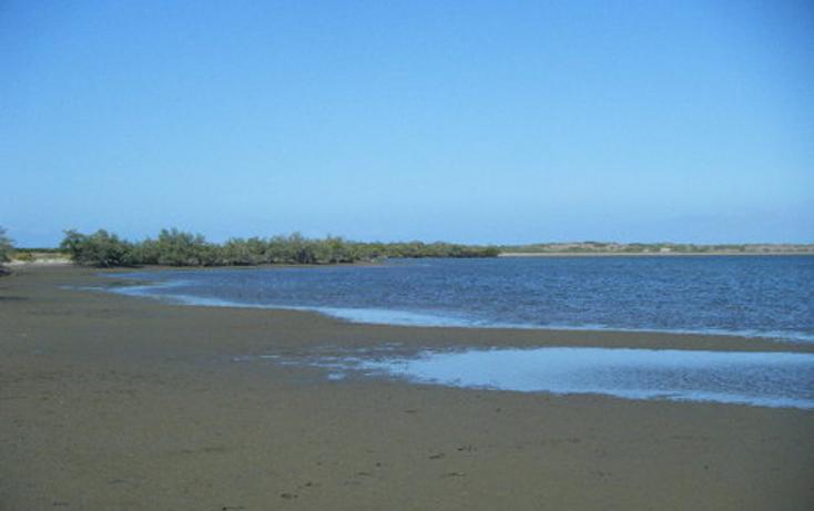 Foto de terreno habitacional en venta en  , paraíso del mar, la paz, baja california sur, 1075897 No. 04