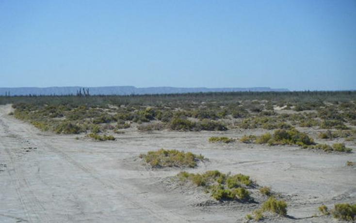 Foto de terreno habitacional en venta en  , paraíso del mar, la paz, baja california sur, 1075897 No. 07