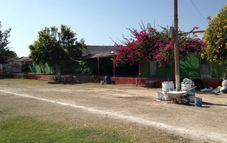 Foto de terreno habitacional en venta en  , paraíso del nazas, torreón, coahuila de zaragoza, 1423583 No. 03