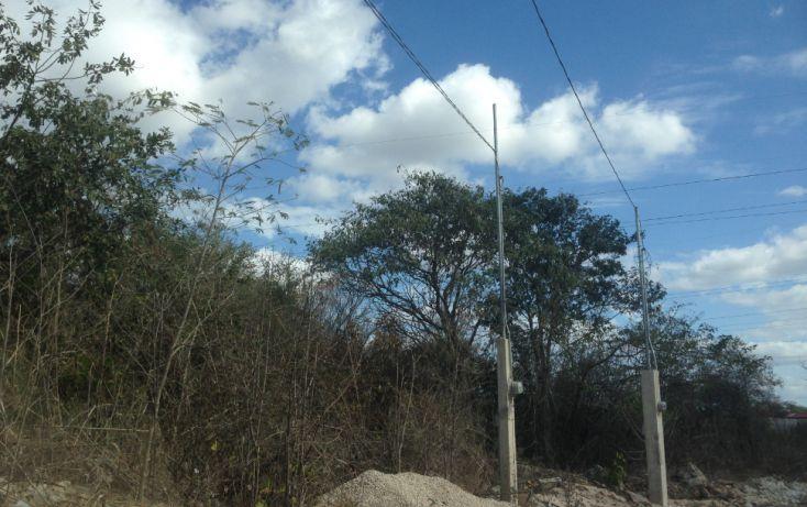 Foto de terreno habitacional en venta en, paraíso, mérida, yucatán, 1674596 no 01