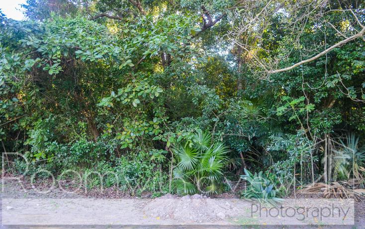 Foto de terreno habitacional en venta en paraiso tankah , tulum centro, tulum, quintana roo, 1655425 No. 06
