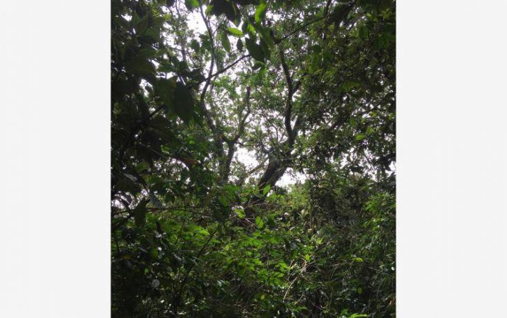 Foto de terreno habitacional en venta en paraje agua del prior, san andrés nicolás bravo, malinalco, estado de méxico, 1243831 no 01