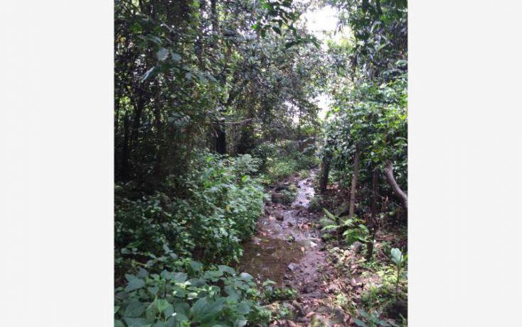 Foto de terreno habitacional en venta en paraje agua del prior, san andrés nicolás bravo, malinalco, estado de méxico, 1243831 no 03
