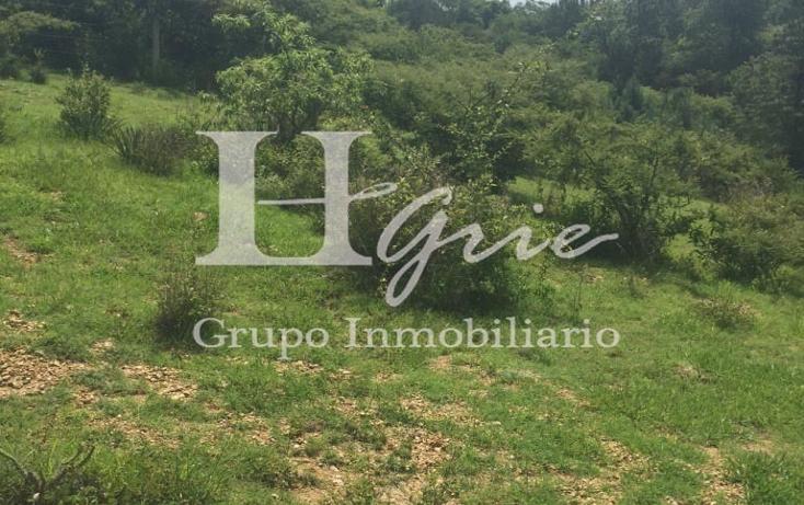 Foto de terreno habitacional en venta en paraje la ladera de loma larga , san felipe del agua 1, oaxaca de juárez, oaxaca, 1009259 No. 04