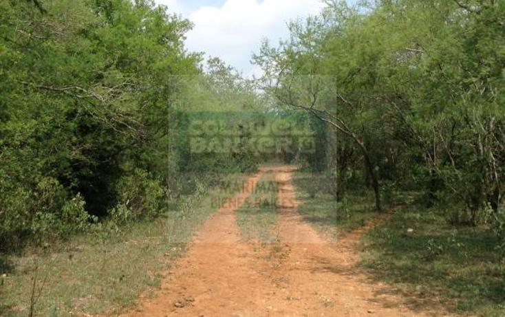 Foto de terreno comercial en venta en  , paras, montemorelos, nuevo le?n, 1843304 No. 06