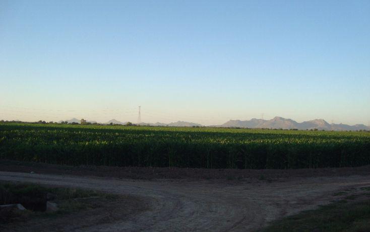 Foto de terreno habitacional en venta en parcela 134 z1 p11 carretera a ej felipe angeles, individual ahome, ahome, sinaloa, 1717100 no 01