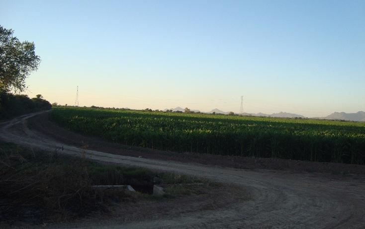 Foto de terreno habitacional en venta en parcela 134 z1 p/1/1 carretera a ej. felipe angeles , individual ahome, ahome, sinaloa, 1717100 No. 09