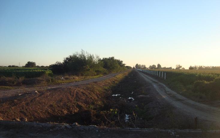 Foto de terreno habitacional en venta en parcela 134 z1 p/1/1 carretera a ej. felipe angeles , individual ahome, ahome, sinaloa, 1717100 No. 10