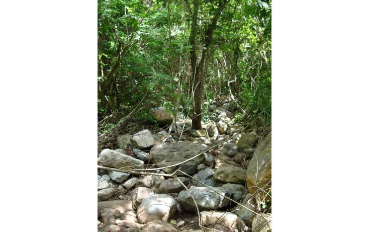 Foto de terreno habitacional en venta en parcela 29, ejido de miramar fraccion 2 29, ejidal miramar, manzanillo, colima, 1651905 No. 07