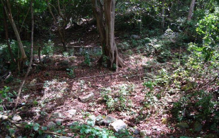 Foto de terreno habitacional en venta en parcela 29, ejido de miramar fraccion 2 29, ejidal miramar, manzanillo, colima, 1651905 no 08