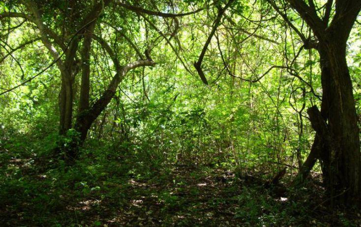 Foto de terreno habitacional en venta en parcela 29, ejido de miramar fraccion 2 29, ejidal miramar, manzanillo, colima, 1651905 no 09