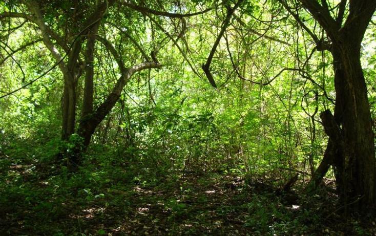 Foto de terreno habitacional en venta en parcela 29, ejido de miramar fraccion 2 29, ejidal miramar, manzanillo, colima, 1651905 No. 09