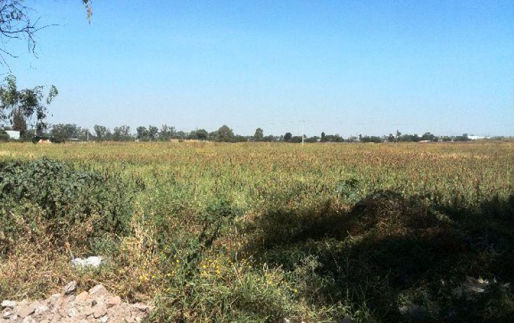 Foto de terreno habitacional en venta en parcela 64 sn, rancho grande, irapuato, guanajuato, 1705176 no 01