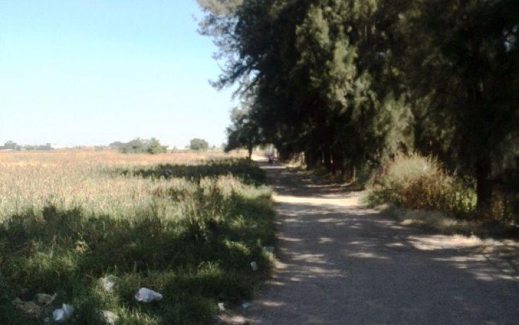Foto de terreno habitacional en venta en parcela 64 sn, rancho grande, irapuato, guanajuato, 1705176 no 04