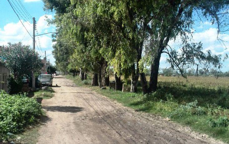 Foto de terreno habitacional en venta en parcela 64 sn, rancho grande, irapuato, guanajuato, 1705176 no 05