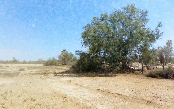 Foto de terreno habitacional en venta en parcela 81 z1 p211 sn, chametla, la paz, baja california sur, 1721110 no 01