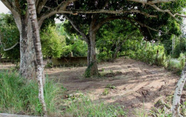 Foto de terreno habitacional en venta en parcela, playa de vacas, medellín, veracruz, 221991 no 02