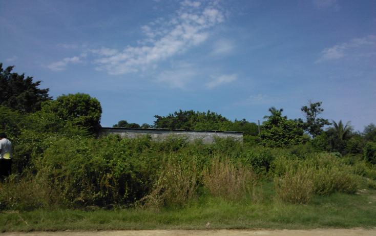 Foto de terreno habitacional en venta en  , parque ecológico de viveristas, acapulco de juárez, guerrero, 1406881 No. 03