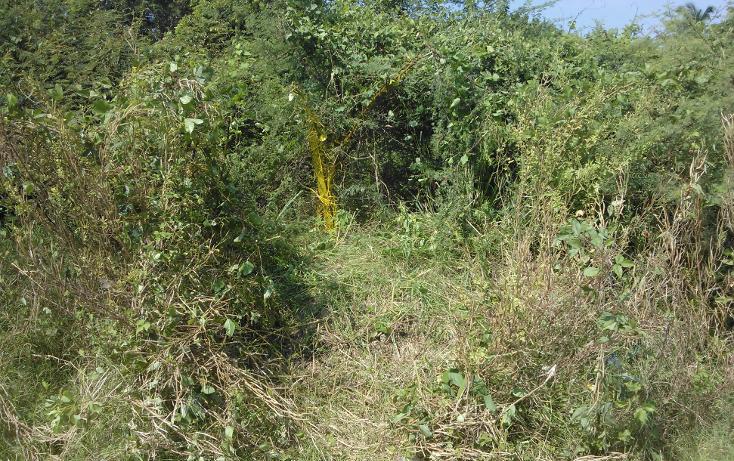 Foto de terreno habitacional en venta en  , parque ecológico de viveristas, acapulco de juárez, guerrero, 1406881 No. 05