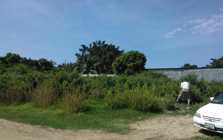 Foto de terreno habitacional en venta en  , parque ecológico de viveristas, acapulco de juárez, guerrero, 1406881 No. 06