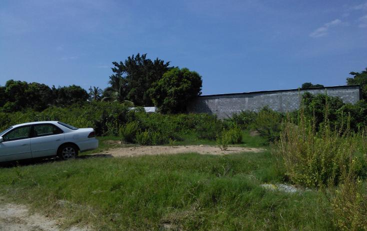 Foto de terreno habitacional en venta en  , parque ecológico de viveristas, acapulco de juárez, guerrero, 1406881 No. 08