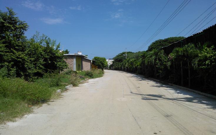Foto de terreno habitacional en venta en  , parque ecológico de viveristas, acapulco de juárez, guerrero, 1406881 No. 09
