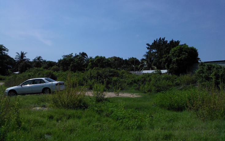 Foto de terreno habitacional en venta en  , parque ecológico de viveristas, acapulco de juárez, guerrero, 1406881 No. 10