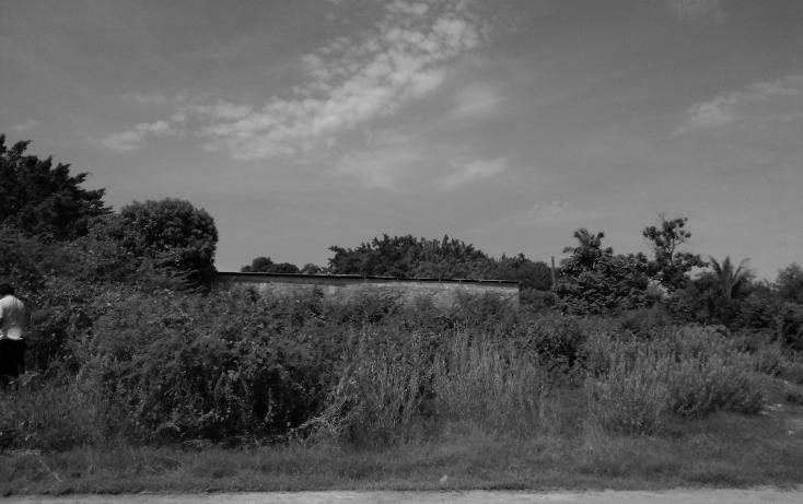Foto de terreno habitacional en venta en  , parque ecológico de viveristas, acapulco de juárez, guerrero, 1406881 No. 11