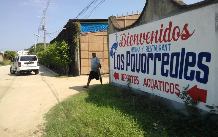Foto de terreno habitacional en venta en  , parque ecológico de viveristas, acapulco de juárez, guerrero, 1406881 No. 12