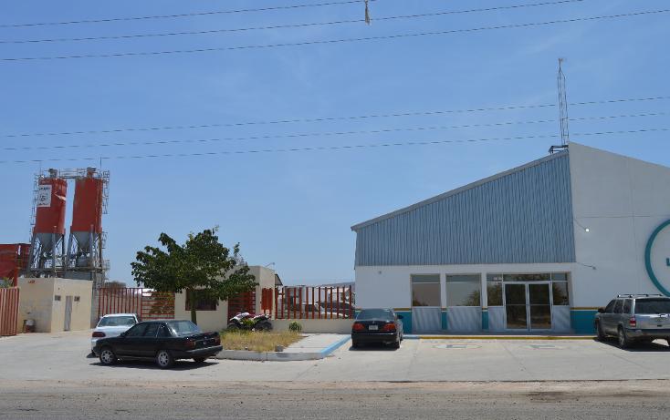 Foto de nave industrial en renta en  , parque industrial, la paz, baja california sur, 1241231 No. 05