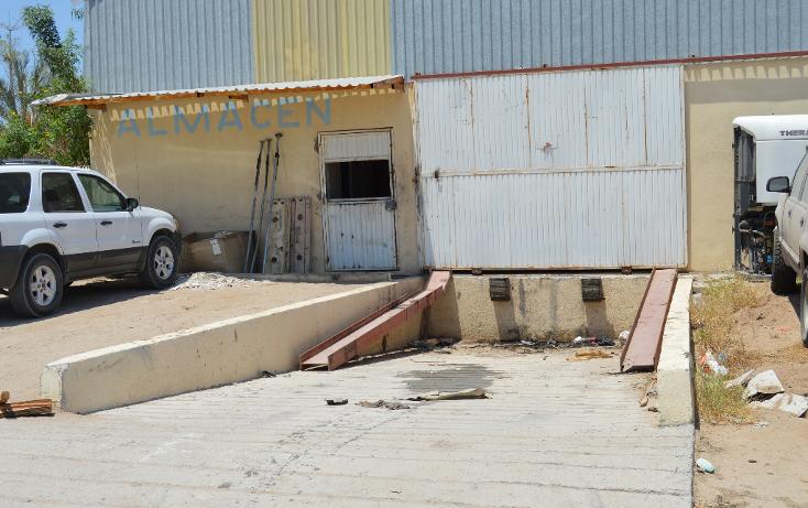 Foto de nave industrial en renta en  , parque industrial, la paz, baja california sur, 1241231 No. 08