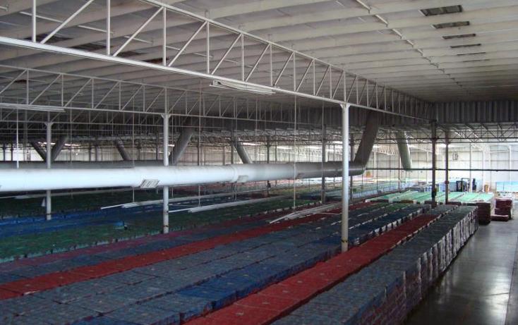 Foto de nave industrial en renta en  , parque industrial lagunero, gómez palacio, durango, 610681 No. 04
