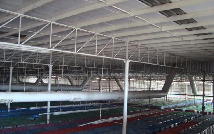 Foto de nave industrial en renta en  , parque industrial lagunero, gómez palacio, durango, 610681 No. 07