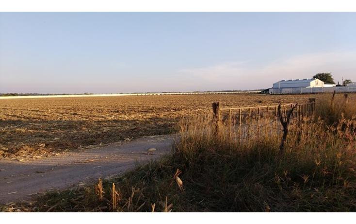 Foto de terreno habitacional en venta en  , parques de tesistán, zapopan, jalisco, 2034116 No. 03