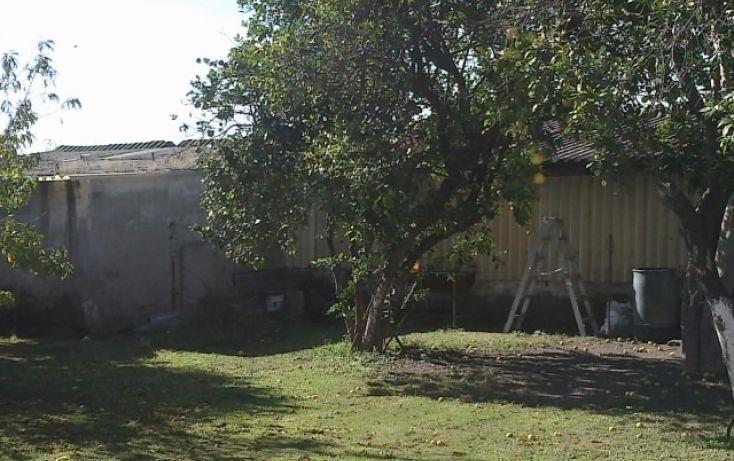 Foto de terreno habitacional en renta en, parques de tesistán, zapopan, jalisco, 2045671 no 14
