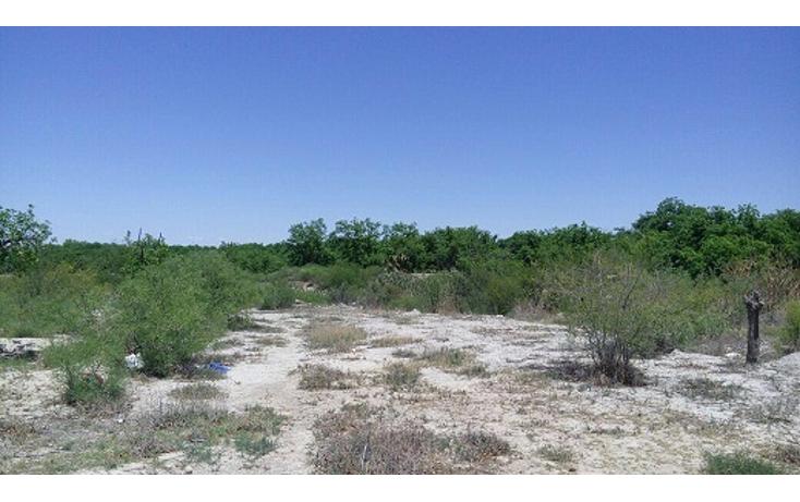 Foto de terreno habitacional en venta en  , parras de la fuente centro, parras, coahuila de zaragoza, 1965401 No. 04