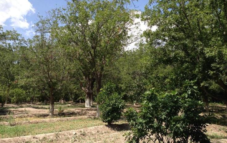 Foto de rancho en venta en  , parras de la fuente centro, parras, coahuila de zaragoza, 394166 No. 03