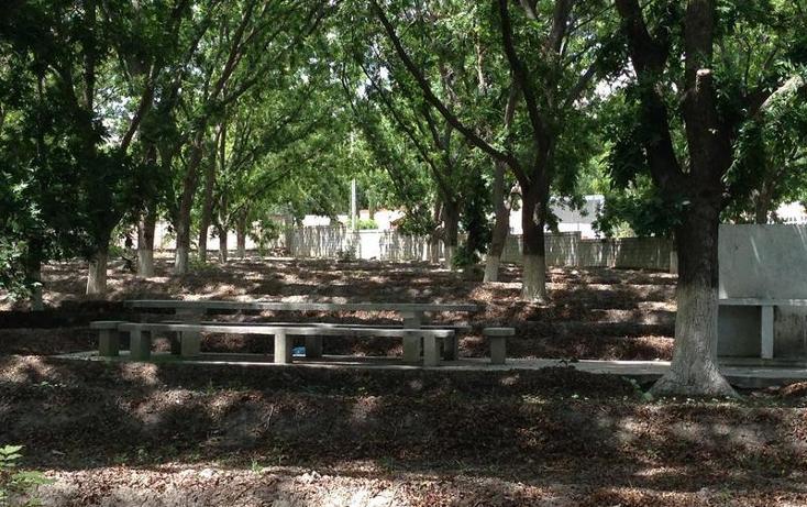 Foto de terreno habitacional en venta en  , parras, parras, coahuila de zaragoza, 1028329 No. 05
