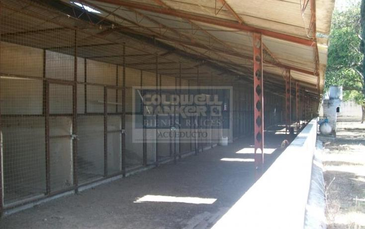Foto de terreno habitacional en venta en pascual ortiz , la venta del astillero, zapopan, jalisco, 257023 No. 05