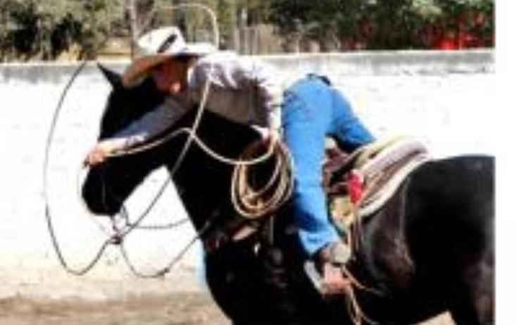 Foto de rancho en venta en  0, estación bernal, tequisquiapan, querétaro, 1569230 No. 27