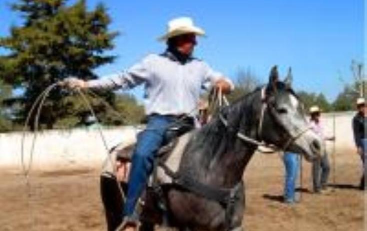 Foto de rancho en venta en  0, estación bernal, tequisquiapan, querétaro, 1569230 No. 28