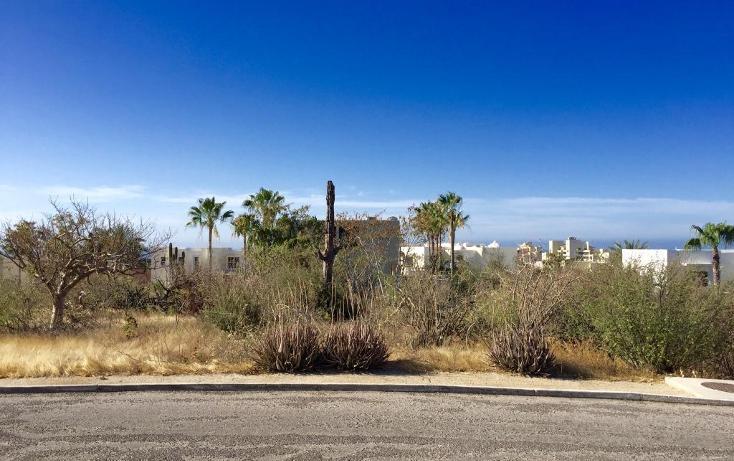 Foto de terreno habitacional en venta en  , cabo bello, los cabos, baja california sur, 1775399 No. 06