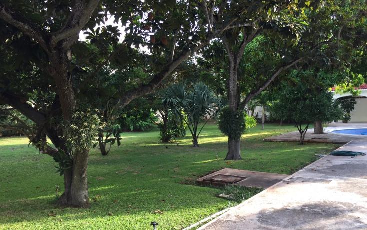 Foto de casa en venta en  , paseo de montejo, mérida, yucatán, 1098037 No. 04