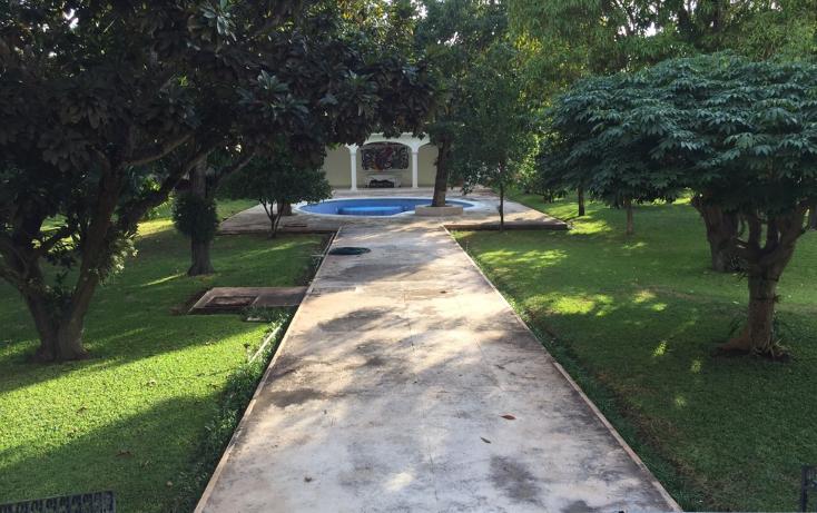 Foto de casa en venta en  , paseo de montejo, mérida, yucatán, 1098037 No. 05
