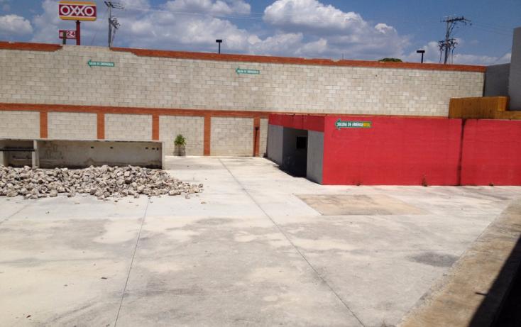 Foto de terreno comercial en renta en  , paseo de montejo, mérida, yucatán, 1203061 No. 10