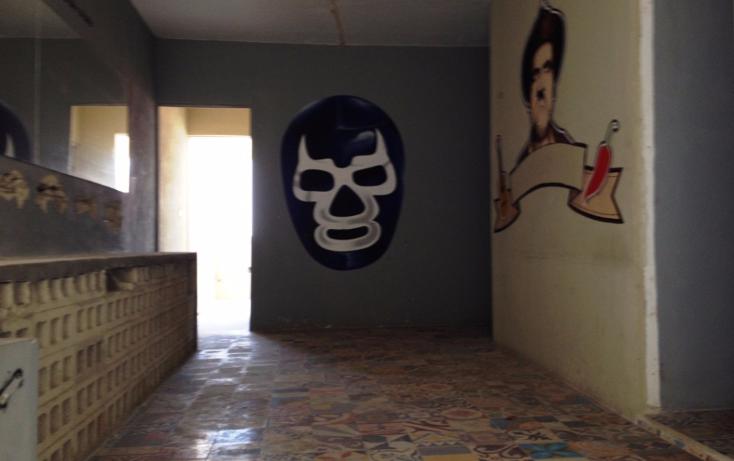 Foto de terreno comercial en renta en  , paseo de montejo, mérida, yucatán, 1203061 No. 12