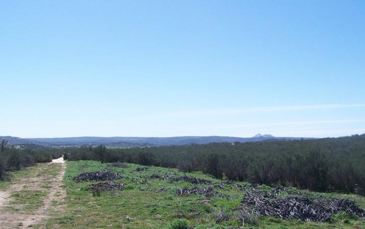 Foto de terreno comercial en venta en  , paseo del águila rancho eseorial, tecate, baja california, 1213623 No. 01