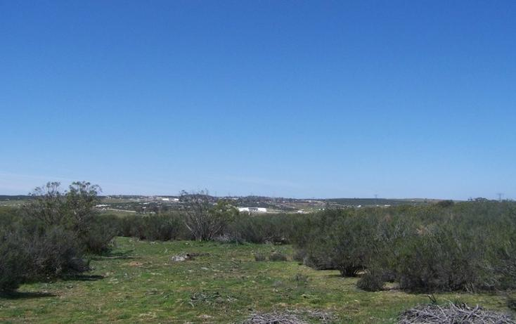 Foto de terreno comercial en venta en  , paseo del águila rancho eseorial, tecate, baja california, 1213623 No. 02
